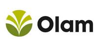 Olam-new